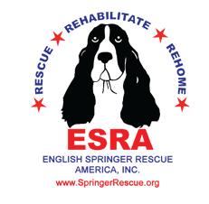 English Springer Rescue America, Inc.