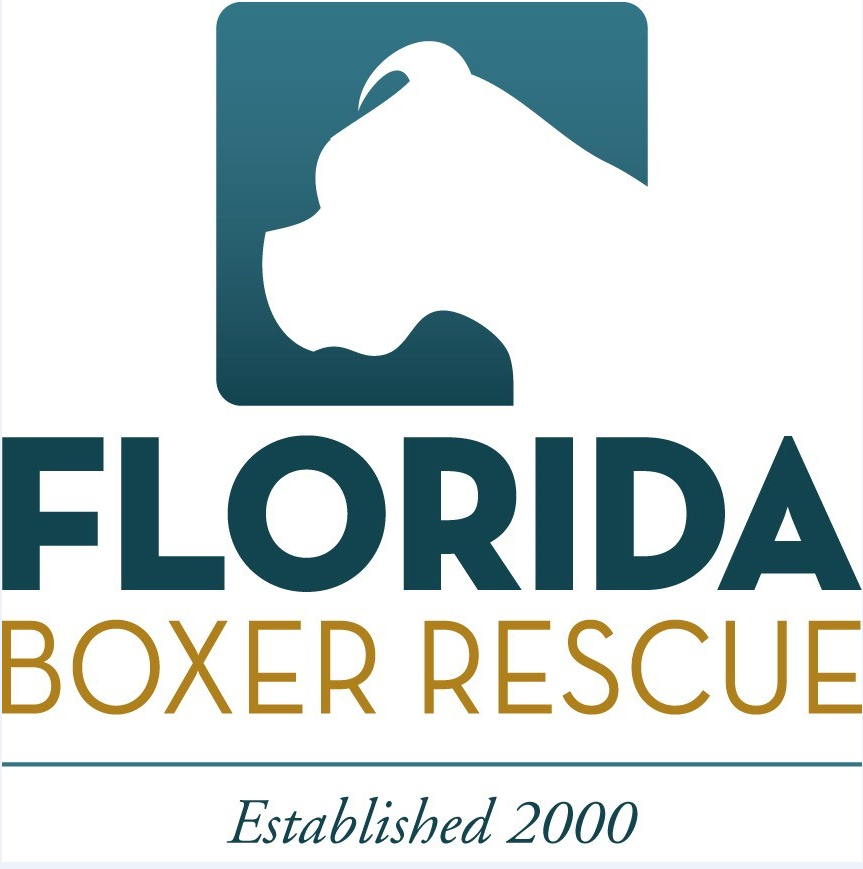 Florida Boxer Rescue