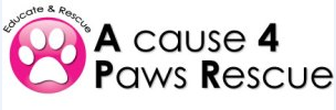 A Cause 4 Paws Rescue
