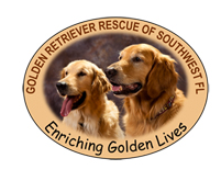 Golden Retriever Rescue of Southwest Florida