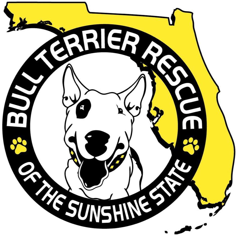 Bull Terrier Rescue of the Sunshine State